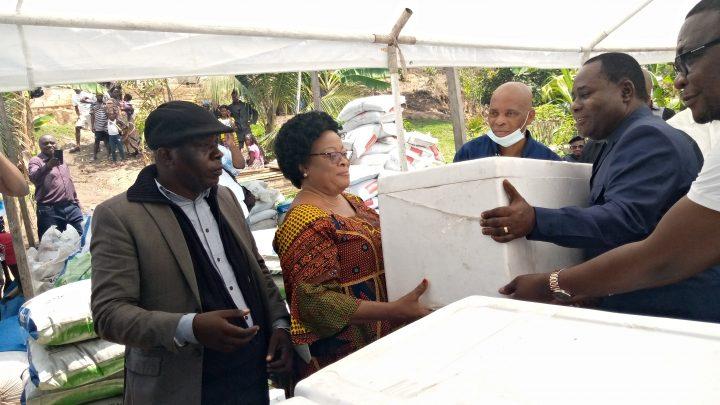 Kinshasa: Plus de 100 ONG du secteur piscicole de Mont-Ngafula bénéficient chacune de 7 500 alevins